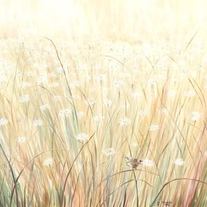 """Fürkésző 80x100 cm, eredeti, egyedi olajfestmény, Otthon & lakás, Dekoráció, Képzőművészet, Kép, Festmény, Olajfestmény, Lakberendezés, Falikép, Festészet, Az \""""aranyszőke\"""" mezőn, fehér virágok között nézelődik az ökörszem.\nA kép nagyméretű (80x100 cm), mod..., Meska"""