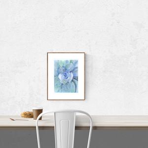 Kövirózsa portré - art print (akvarell festményem alapján), Képzőművészet, Otthon & lakás, Illusztráció, Festmény, Akvarell, Festészet, Fotó, grafika, rajz, illusztráció, Kövirózsa portré - art print (akvarell festményem alapján)\n\n21 x 29,7 cm (A4)\n\nSzépséges kék-zöld ár..., Meska