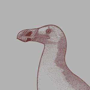 ÓRI�SALKA poszter / 'POSTHUMUS' kihalt állatok sorozat, skandináv stílusú, modern poszter nagy méretben (PixMarket) - Meska.hu