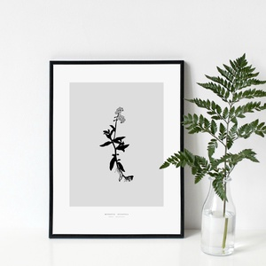 BOTANIKA sorozat - Nefelejcs poszter / skandináv stílusú, modern, minimalista poszter nagy méretben / 50 x 70 cm, Otthon & lakás, Dekoráció, Kép, Lakberendezés, Falikép, Képzőművészet, Illusztráció, Fotó, grafika, rajz, illusztráció, NEFELEJCS poszter\n\nAki a virágot szereti...\nAzt hiszem, sokan tartozunk ebbe a kategóriába :)\n\nBotan..., Meska