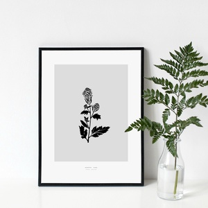 BOTANIKA sorozat - Mustár poszter / skandináv stílusú, modern, minimalista poszter nagy méretben / 50 x 70 cm, Otthon & lakás, Dekoráció, Kép, Lakberendezés, Falikép, Képzőművészet, Illusztráció, Fotó, grafika, rajz, illusztráció, MUSTÁR poszter\n\nAki a virágot szereti...\nAzt hiszem, sokan tartozunk ebbe a kategóriába :)\n\nBotanika..., Meska