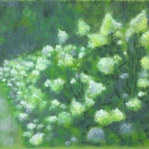 Nyári kert, Művészet, Festmény, Pasztell, pasztell festmény 29.5x42 cm, Meska