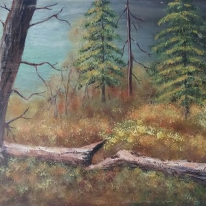 Erdőrészlet, Képzőművészet, Otthon & lakás, Festmény, Akril, Festészet, Farostlemezre készült, erdőrészletet ábrázoló akrilfestmény. Mérete 26x39cm. Az ár keret nélkül érte..., Meska