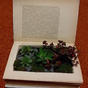 virág a könyvben, régi könyvek új élete: antikvár könyvekbe ültetett pozsgás növények\n\na termék rendelésre készül, a j..., Meska