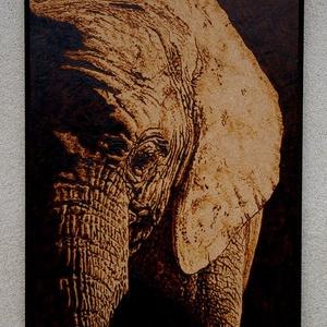 Elefánt falikép, Otthon & Lakás, Tárolás & Rendszerezés, Gravírozás, pirográfia, A4 méretű falikép.\nPirográf technikával,kézzel készült gyönyörű,egyedi termék.Örök darab-remek ajánd..., Meska