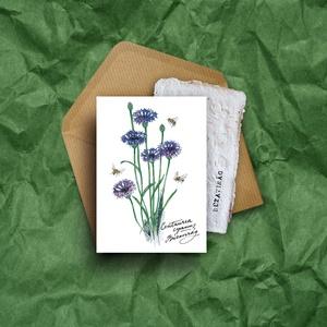 """Paperplant üdvözlőlap virágmagokkal, búzavirág, Képeslap & Levélpapír, Papír írószer, Otthon & Lakás, Újrahasznosított alapanyagból készült termékek, Nagyon szeretjük a növényeket, mindig meghálálják a gondoskodást.\nÉs ahogy mondják: \""""Aki a virágot s..., Meska"""