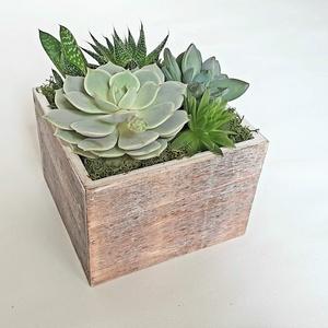 Asztaldísz fadobozban, Esküvő, Dekoráció, Asztaldísz, Mindenmás, Virágkötés, Fadobozba ültetett pozsgás növényekből készült asztaldísz.  A doboz mérete 11x11x 8 cm, nylonnal bél..., Meska