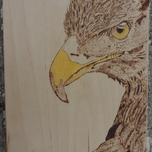pirográf sas, Más művészeti ág, Művészet, Gravírozás, pirográfia, Pirográf  technikával készült fa falikép 20 cmx 25cm méretben 1,5 cm vastagságú., Meska