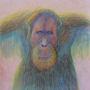 Portré, Művészet, Grafika & Illusztráció, Fotó, grafika, rajz, illusztráció, Szürreális majomportré, egyedi, vibráló színekkel.\nA kép saját ötlet, kivitelezés, még hasonlót sem ..., Meska