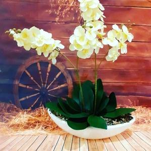 Örök orchidea, Lakberendezés, Otthon & lakás, Koszorú, Virágkötés, kb 77 cm magas csónak kaspóban, Meska