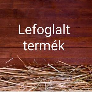 Lefoglalt termék - Meska.hu