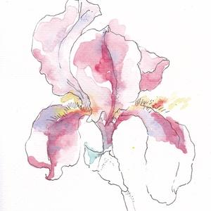 nyomat akvarellről, Papír, Dekorációs kellékek, Festett tárgyak, festészet, Papírművészet, Íriszt ábrázoló akvarelleimet a rég várt tavaszi meleg ihlette, toll és akvarell festék technikával ..., Meska
