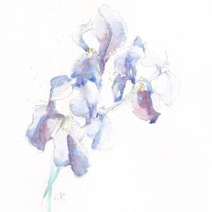 Írisz II. művészi nyomat akvarellről, Otthon & lakás, Esküvő, Képzőművészet, Illusztráció, Esküvői dekoráció, Íriszt ábrázoló akvarelleimet a rég várt tavaszi meleg ihlette, toll és akvarell festék technikával ..., Meska