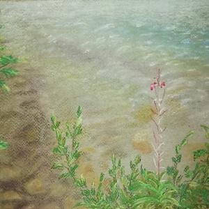 Vízparton - pasztell kép, Művészet, Festmény, Pasztell, Festészet, Fotó, grafika, rajz, illusztráció, A Canson pasztell-kartonra készült, 21 x 30 cm-es porpasztell festmény egy nyári, nyugalmas, tóparti..., Meska