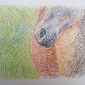 """Ló, Otthon & Lakás, Kép & Falikép, Dekoráció, A színes ceruzával készített ló kb. 8x11 cm nagyságú.  """"Nem a lovak erejében leli kedvét, nem a férf..., Meska"""