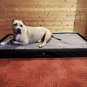 Egyedi, minőségi, lehúzható és mosható kutyafekhely, kutyaágy, Otthon & lakás, Lakberendezés, Állatfelszerelések, Kutyafelszerelés, Varrás, -Mérete: 150 cm  X  80 cm ; perem magassága 10 cm; fekvőfelülete 8 cm\n-Cipzáron keresztül eltávolíth..., Meska