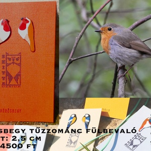Vörösbegy egyedi tűzzománc fülbevaló, Ékszer, Fülbevaló, Tűzzománc, Egyedi kézzel készült madaras fülbevalő, mely egy vörösbegyet ábrázol. , Meska