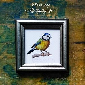 Kékcinke, kenderike, ökörszem, széncinke: keretezett akvarell mininyomat, Képzőművészet, Otthon & lakás, Festmény, Akvarell, Lakberendezés, Festészet, Akvarell festményemről készített, keretezett (8,5x8,5 cm) kiváló minőségű, szignózott művészi nyomat..., Meska