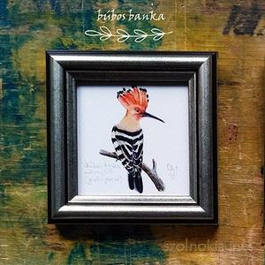 Búbos banka, meggyvágó, fenyőrigó, gyurgyalag: keretezett akvarell mininyomat, Művészet, Művészi nyomat, Festészet, Akvarell festményemről készített, keretezett (8,5x8,5 cm) kiváló minőségű, szignózott művészi nyomat..., Meska