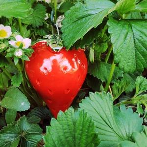 Kerámia eper, Kerámia, Szobor, Művészet, Kerámia, Eperszezon! Mindig friss kerámiaeper, amely bárki kertjének irigylésre méltó dísze lesz. Teheted az ..., Meska