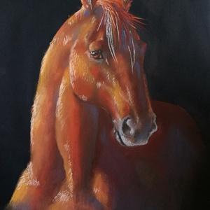 Pasztell ló portré, Otthon & lakás, Képzőművészet, Festmény, Pasztell, Festészet, Fotó, grafika, rajz, illusztráció, Lovasok, figyelem :) \nA lovas lét egy életérzés, miért ne lehetne ezt az érzést képbe önteni, és a k..., Meska