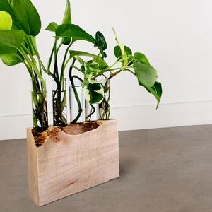 """Kémcsöves kaspó \""""NOOB\"""", Otthon & Lakás, Dekoráció, Virágtartó, Famegmunkálás, Egyszerű, letisztult forma, kreatív design. Zöld növények - virágcserép helyett - izgalmas kémcsövek..., Meska"""