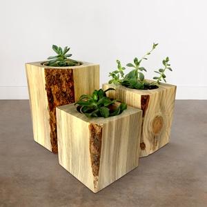 """Szélezetlen kaspó \""""NOOB\"""", Otthon & Lakás, Dekoráció, Virágtartó, Famegmunkálás, Mintha a zöld növények közvetlenül a fatönkből nőttek volna ki!\nEgy csepp természet – az otthonos me..., Meska"""