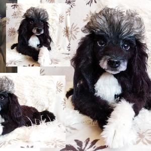 Kutya plüss portré/ kutya hasonmás plüss készítés szülinapra, névnapra, Gyerek & játék, Játék, Otthon & lakás, Képzőművészet, Varrás, Gyurma, Neked csak annyi a dolgod, hogy küldj nekem pár jó minőségű képet a kutyusodról! :)\n\nFONTOS!! Kérlek..., Meska