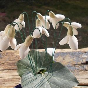 10 szál kerámia hóvirág, Otthon & Lakás, Dekoráció, Csokor & Virágdísz, Kerámia,  .Nagyon szeretem ezt a szerény ,egyszerű virágot. Fehérre égő agyagból készítettem ezeket a  hóvirá..., Meska