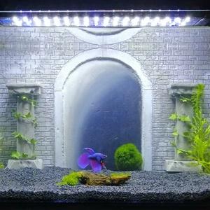 Olaszországi alagút egyedi kézműves akvárium, Művészet, Más művészeti ág, Üvegművészet, Festészet, Köszöntelek kedves érdeklődő!\n\n\nEgyedi, nem hétköznapi kézműves akváriumháttereket gyártunk. Az első..., Meska