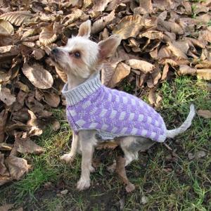 Frigyes őszi-téli szettje , Kutyáknak, Kisállatoknak, Otthon & Lakás, Kötés, Mikroszálas dralonból készült ruha Frigyesnek. \nEz egy jól kezelhető, mosható, prémium minődégű fona..., Meska