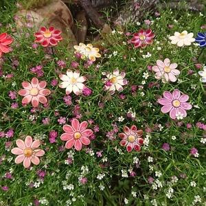 Kicsi Margaréta (9 db) kerámiából, Dísztárgy, Dekoráció, Otthon & Lakás, Kerámia, Kis margaréta virágainkkal tegye otthonát szebbé. Természet közeli színeinkkel, vigye haza a mezők, ..., Meska