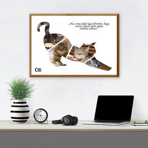 Kollázs - Macska Gazdiknak (További típusok a termékeim között!), Otthon & Lakás, Dekoráció, Kép & Falikép, Fotó, grafika, rajz, illusztráció, Szerető gazdi vagy? Dobd fel a lakásod hangulatát ezzel a cuki macskás kollázzsal, melyben a te kisk..., Meska