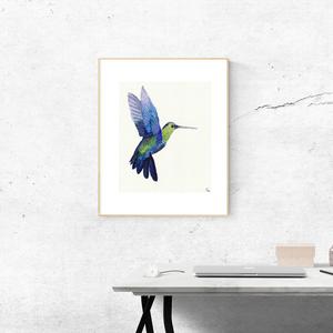 Kolibri - A4 giclée művészi nyomat (akvarell festményem nyomán) - művészet - művészi nyomat - Meska.hu