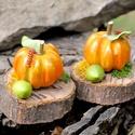 2db Őszi dekoráció, virágkötészeti dísz fakorongon, apró sütőtök dísz, tartós Halloween dekor, asztaldísz, Otthon & lakás, Dekoráció, Dísz, Ünnepi dekoráció, 2db őszi dekoráció fakorongon kis sütőtökkel, zöld bogyóval levélkével és zuzmóval díszítve. Ez a de..., Meska