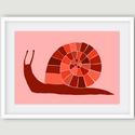 Csiga 5 rózsaszín, narancssárga A4 illusztráció, Képzőművészet, Illusztráció, Grafika, Rajz, A termék  saját rajzból készült digitális nyomdai nyomat.  A csigát egy esős májusi estén rajzoltam ..., Meska