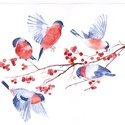 Madarak, A/4-es méretű akvarell festmény akvarell papír...