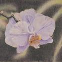 Orchidea rajz, Művészet, Grafika & Illusztráció, Fotó, grafika, rajz, illusztráció, Eredeti, Magányos orchidea című színes ceruza rajzom. A4-es méretű papíron, keret nélkül. Hogy a sz..., Meska