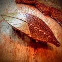 Toll ihlette hajcsat, Ékszer, Képzőművészet, Vegyes technika, A természet szerelmeseinek!Toll mintázatú,arany akrillal festett műbőr hajcsat. Mérete: 6x2 cm, Meska