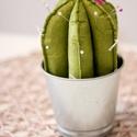 Kaktusz tűpárna nagy filcből, Kaktusz tűpárna, 20 cm magas, filcből készült...