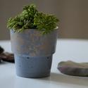 Mini beton kaspó - pasztell kék színben, Otthon & lakás, Lakberendezés, Kaspó, virágtartó, váza, korsó, cserép, Azonnal bele lehet szeretni és nem lehet megunni.  Ez az exkluzív beton virágtartó utánozhatatlan ha..., Meska