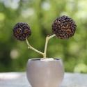 Dupla kávévirág kaspóban, Dekoráció, Otthon, lakberendezés, Dísz, Kaspó, virágtartó, váza, korsó, cserép, Kávé virág, aminek a virágait polisztirol golyóra ragasztott kávészemek adják, kerámia kasp..., Meska