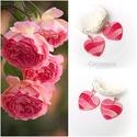 Rózsa egyensúly - gyöngyház fülbevaló, Ékszer, óra, Mindenmás, Fülbevaló, Ékszerkészítés, Festett tárgyak, Egyedi, kézzel festett, gyöngyház fülbevaló,  rekonstruált rózsakvarc ásványgyöngyökkel.  A szív a ..., Meska