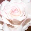Cukorvirág / Rózsa/, Esküvő, Dekoráció, Karácsonyi, adventi apróságok, Esküvői dekoráció, Festett tárgyak, Virágkötés, Egyedi kézzel, drótozott technikával készített cukorvirág.Megtévesztésig hasonlítanak az eredetihez..., Meska