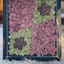 Lila zuzmókép natur szerelemmel.., Otthon & Lakás, Dekoráció, Kép & Falikép, Virágkötés, Mindenmás, Koptatott  kék fakeretben,tartósitott izlandi zuzmó dekoráció,két szin harmóniájával,s élethű művir..., Meska
