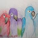 Színes papagájok színesceruza rajzom, Képzőművészet, Grafika, Rajz, Fotó, grafika, rajz, illusztráció,  Színes ceruzával papagájokat rajzoltam. A rajz különlegesség hogy a színek túlnyulnak a kontúr von..., Meska