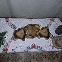 Lépcsős fa virágtartó rusztikus kivitelben., Dekoráció, Otthon, lakberendezés, Kaspó, virágtartó, váza, korsó, cserép, Famegmunkálás, Fémmegmunkálás, Kb 15 cm es akácfa korongokból készűlt csiszolva ,lakkozva,rozsdamentes ellemekkel összeszerelve. K..., Meska