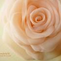 Barackos egyszínű rózsa - bross és hajcsat RENDELHETŐ, Esküvő, Ruha, divat, cipő, Hajdísz, ruhadísz, Egészen visszafogott, barackrózsaszín organza szirmok alkotják ezt a virágot.   (ha színátmenetest s..., Meska