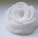Fehér  rózsa - kitűző/hajcsat, Esküvő, Ruha, divat, cipő, Hajbavaló, Hajcsat, Varrás, Ennek a klasszikus formájú textil rózsának minden egyes szirmát magam alakítottam, varrtam. (Ekrü v..., Meska