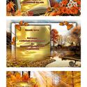 A gazdagság bölcsessége 1-7 kártya együtt - Goldi kártya
